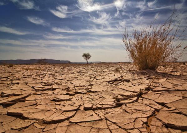 Est ce que le réchauffement climatique est dangereux?